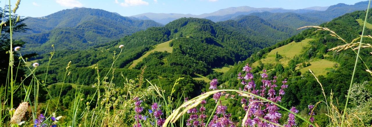 Cultuur- en wandelreis Bulgarije Balkangebergte